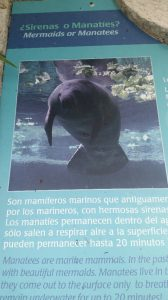 Manatee Sign at Xcaret Park